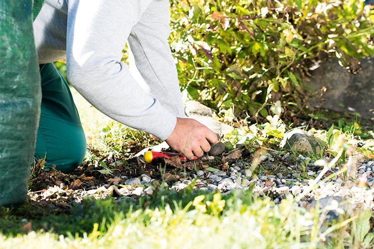 Gärtners der Gartenbaugruppe der Stiftung arwole